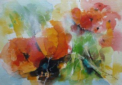 516. Mohnblumen 3 | Aquarell | 50 x 40 cm